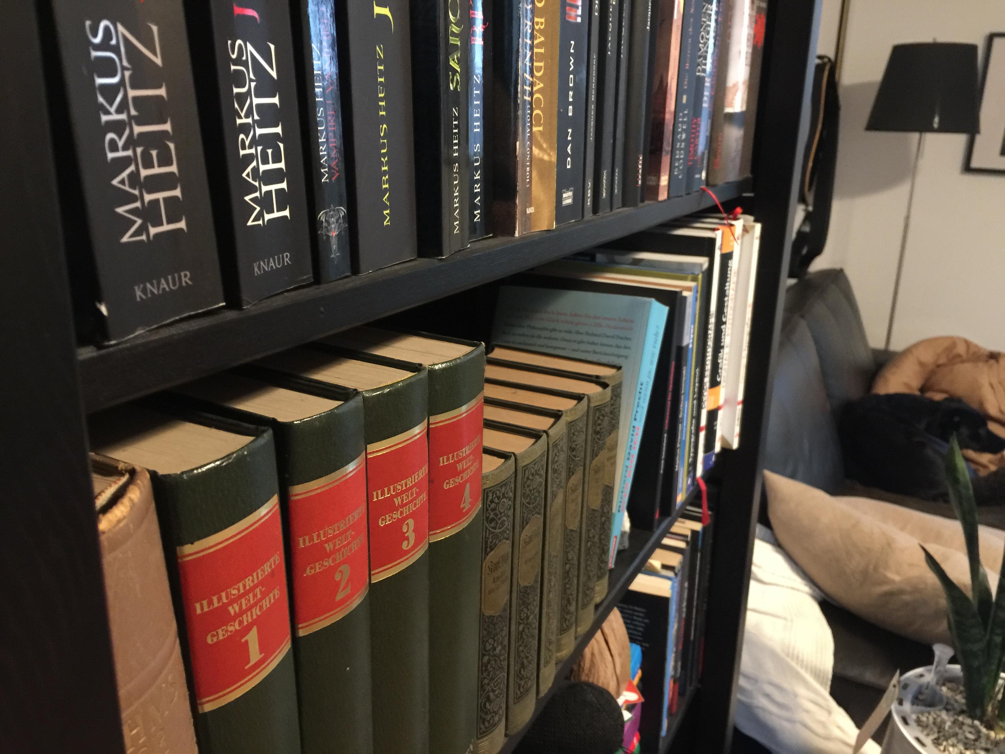 Hausstauballergie viel Staub sammelt sich auch auf Büchern