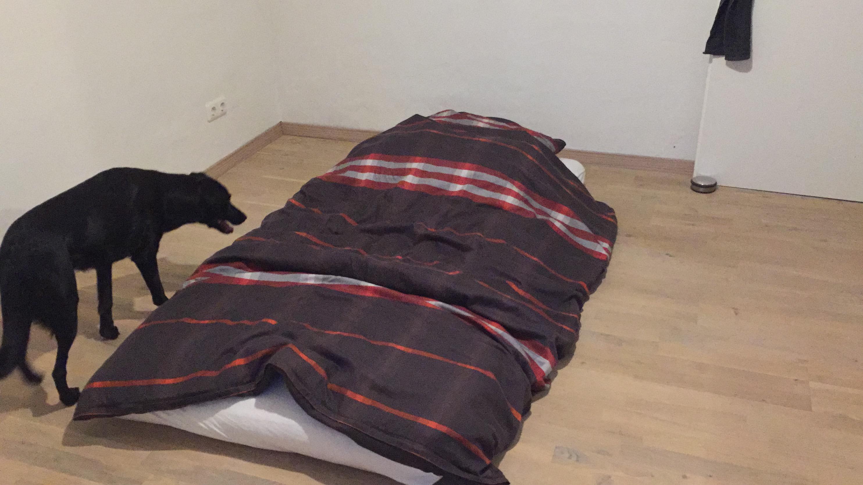 diy kotatsu ikea hack 8404. Black Bedroom Furniture Sets. Home Design Ideas
